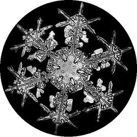 Bentley_snowflake8_12