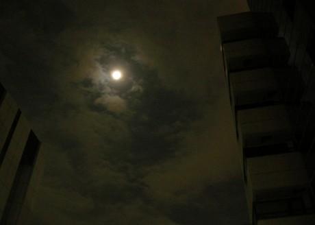 Nightmoonjpg