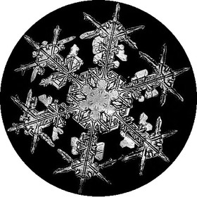 Bentley_snowflake8_2